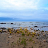 Bothnian Bay